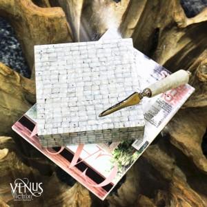 Abridor de Cartas e Envelopes em Metal com Acabamento de Madrepérola C25 cm